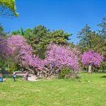 Breeze Residence - город Варна: Фото - изображение 13