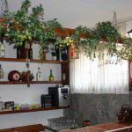 ASEVA HOUSE: Фото - изображение 18