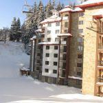 KAMELIA Apart Hotel: Фото - изображение 3