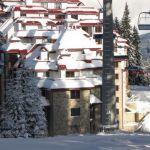 KAMELIA Apart Hotel: Фото - изображение 4